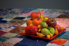 Patchwork Tomatoes (The Good Brat) Tags: co us tomato plate quilt patchwork colorful organic garden fruit harvest grandmother stilllife