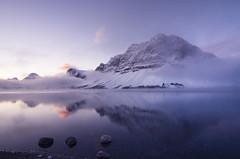 Cool Sunrise (gwendolyn.allsop) Tags: crowfoot mountain bow lake canada national park water sunrise serene reflection d5200 alberta banff