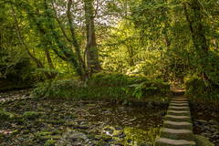 Stepping Stones (babs pix) Tags: northyorkshire steppingstones countryside egtonbridge