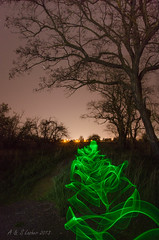 The Green Glow Stick Monster (SimplyAmy74) Tags: longexposure lightpainting night washington nocturnal libertylake glowsticks lazyshutter