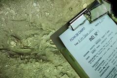 Exhumación As Covas (Lugo) (6)