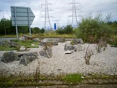 EM10 2016 08 24 (Sibokk) Tags: beasts birds camera digital em10 olympus photography scotland street uk edinburgh la mort death