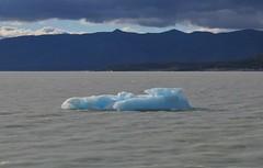IMG_1813 (StangusRiffTreagus) Tags: perito moreno glacier patagonia argentina