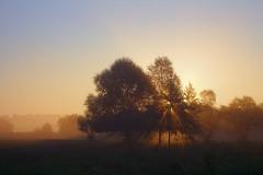 Sunrise () Tags: mist sunrise    2016 canoneos650d mir1v 100v10f