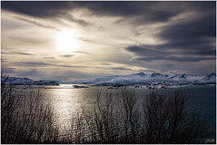 Arctic Light (EXPLORE) (mad_ruth) Tags: troms norway arctic light winter snow mountains sea greatphotographers explore