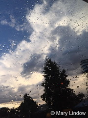 September 14, 2016 - A touch of rain. (Mary Lindow)