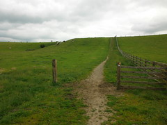 Earby to Barnoldswick 4 (StaircaseInTheDark) Tags: lancashire eastlancashire pendle england northernengland northern britain greatbritain uk unitedkingdom countryside country outdoors nature