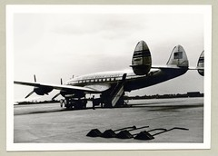 Lockheed L-049 Constellation (Raymondx1) Tags: vintage classic black white blackwhite sw photo foto photography airtravel aviation lockheed l049 constellation connie fifties airport n88847 clipperhotspur panamerican panam