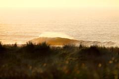 Fin del da (omar suarez asturias) Tags: surf surfing playa playadexago asturias espaa gijon oviedo aviles gozon atardecer paisajes spain beach 150600mm 150600 relax contraluz deporte tiempolibre ola olas wave waves otoo coloresdeotoo canon canon70d