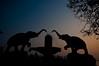 Yanam_18 (SaurabhChatterjee) Tags: andhra france frenchcolony godavari india puducherry siaphotography yanam