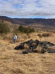 IMG_1408 (Oregon Natural Desert Association) Tags: denny jones ranch weed mat removal 2016 stewardship trips