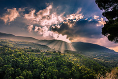 God's light (Vagelis Pikoulas) Tags: sun sunset sunshine sunrays rays tree greece green forest canon tokina landscape sky clouds cloud cloudy nature view