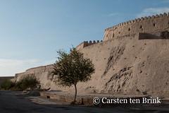Khiva: at the North Wall (10b travelling) Tags: 10btravelling 2015 asia asien bogchadarvoza carstentenbrink centralasia iptcbasic ichankala ichonqala khiva silkroad sovietunion ussr uzbek uzbekistan xiva gate north tenbrink thestans