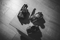 analog cameras (silkfatblues) Tags: leica licam3 bessa voigtlander olympus om10 bessar3a analogphotography analogcameras analog film 35mm cameraporn