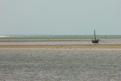 tra le secche di joal-fadiouth (mat56.) Tags: ocean sea landscapes boat barca mare atlantic senegal minimalism minimalismo paesaggi oceano atlantico shallows joalfadiouth secche inimal mat56 sambadia