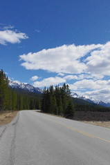 Driving through the Canadian Rockies (white.choco.moka) Tags: canada alberta banffnationalpark canadianrockies