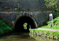 Ellesmere Tunnel (Alastair Cummins) Tags: bridge sunset england water wales marina train reflections river cow boat canal geese scenery steps railway tunnel goose steam float nationaltrust riverdee chirkcastle aqauduct nikond90
