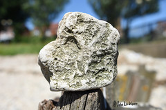 abstract rock (John La-Vigars) Tags: abstract rock closeup nikond7200 nikon d7200 depth field depthoffield outdoor bokeh arty sculpture weathered weatherbeaten eroded crumbling earthy