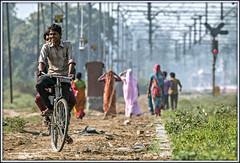 Friendship is ...... having a laugh sharing a bicycle (david.hayes77) Tags: rampur uttarpradesh india 2015 humanity people bicycle riders friendship laughter bike folks