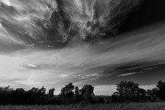 Colliding Clouds (thefisch1) Tags: black white monochrome kansas sky flint hills pasture prairie clouds cirrus alto cumulus interesting oogle nikon nikkor tree horizon
