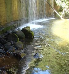 Final de la cada. (margabel2010) Tags: cascadas cascada presa presas agua aguadulce piedras espuma madera airelibre cemento sierra guadarrama