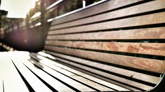 Wooden slatted bench (S Cansfield) Tags: bench wooden slats sun light panasonic lumix gx1 microfourthirds 20mm f17 hbm