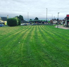 "All the domestic maintenance finished before the rain arrives today 😃 also offer commercial mowing options throughout Coventry and Warwickshire #wardenstreecare <a style=""margin-left:10px; font-size:0.8em;"" href=""http://www.flickr.com/photos/137723818@N08/29118483713/"" target=""_blank"">@flickr</a>"