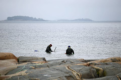 2094. Searching for gold. (Mikael Laaksonen Photography) Tags: sea water finland hanko