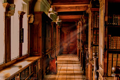 library at Wells cathedral (Susan Tuemkaya) Tags: dom architecture books cathedral design faith god holiday jesus libraryold love manuscripts mystical ourlady paper peace photooftheday pray prayers reading somerset sunday wells wood lovemecutetbtphotoofthedayinstamoodtweegrampicof owl owls