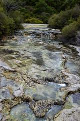 Thermal Wonderland. Rotorua. New Zealand (A.N.T 24) Tags: newzealand northisland rotorua thermalwonderland travelphotography travel photography nikon