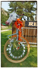 Ride your own Unicorn.... (Bubash) Tags: personalised colorful stars ride unicorn unique different blackhills southdakota spearfish canyon