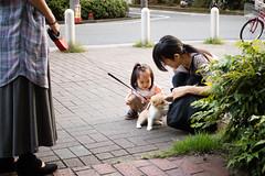 IMG_2127.jpg ( Yukio Endo) Tags: shelly