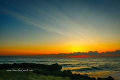 Wispy Cloud Sunrise (tclaud2002) Tags: sun sunrise clouds cloudy wispy sky ocean water atlantic atlanticocean seascape rocks naturemorning dawn hutchinsonisland stuart florida usa outdoors outside