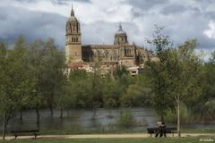 EL BESO (maega) Tags: serenidad rio river agua water cielo catedral salamanca