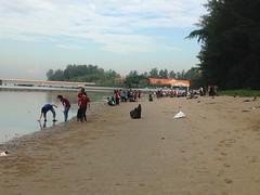2016-09-03 09.11.14 TM7 CAPT & NUS DOS [Joleen Chan] (Habitatnews) Tags: tanahmerah7 capt nus coastalcleanup coastalcleanupsingapore iccs iccs2016