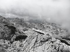 Auf dem Weg zum Zwlferkogel II (Peter Krimbacher) Tags: kalkplatten gebirge zwlferkogel karst sw bw