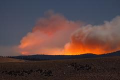 Owens River Fire, First Night (Jeffrey Sullivan) Tags: owens river fire wildfire forest night photography eastern sierra lee vining mono county california canon eos 6d copyright september 2016 jeff sullivan basin