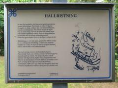 Informationstavla vid hällristningar vid Hällristningscvägen i Hovås i Göteborg 2016 (biketommy999) Tags: hovås göteborg sverige sweden hällristning fornminne kulturminne 2016 biketommy biketommy999 informationstavla