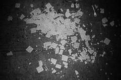 43610010 (kyrieelizabeth) Tags: nyc streetphotography staybrokeshootfilm 35mm olympusxa film filmisnotdead noiretblanc newyorkcity brooklyn blackwhite blackandwhite streets
