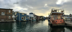 Colourful Houseboats with Cloudy Sky (Serthra) Tags: iphonography iphone6splus iphone panorama victoria britishcolumbia canada water sea seascape wharf houseboat building clouds cloudy sky reflections urban cityview city dock waterfront landscape winter afternoon house