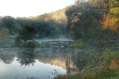 Morning mist reflection (JPShen) Tags: reflection mist morning bridge small lake tree autumn