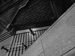 Woman Descending Library Stairs (veyoung52) Tags: noiretblanc staircase library freelibrary philadelphia stairs