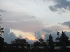 IMG_1248 (LindseyS2008) Tags: fincadelnino spain benajarafe sunrise