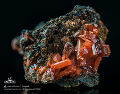 Crocoita (Mr Giuseppe) Tags: mineral minerales geologia mineralogia rocas rocks crystals geology mineralogy