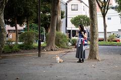 IMG_2119.jpg ( Yukio Endo) Tags: shelly