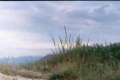 Negative0-07-5A(1) (mariaaa.filipova) Tags: zenitttl kodak iso 200 film analog photography bulgaria bulgarian nature walk alone pirin mountain green landscape helios44m summer 2016 russian camera adventure