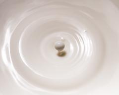 Lait (RMImage) Tags: lait milk splash