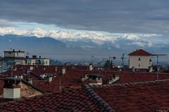 le montagne bianche viste dai tetti (Clay Bass) Tags: 70200 saluzzo d750 mountains nikon roofs snow