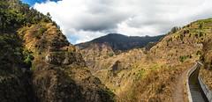 Levada do Norte - Madeira