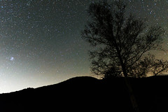 6Norikura Highland (anglo10) Tags: japan     field  starscape